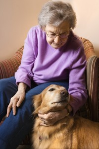 Caregivers in Apache Junction AZ: 5 Benefits of Pet Therapy for Seniors